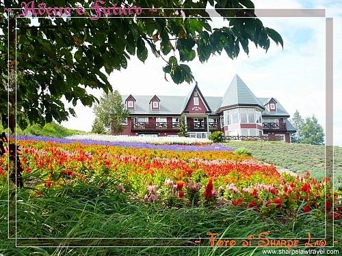 2008-9-3 (179) - 路途中的歐陸式大屋+靚花