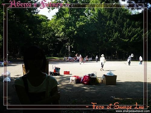 2008-9-5 (2) - 丹山公園