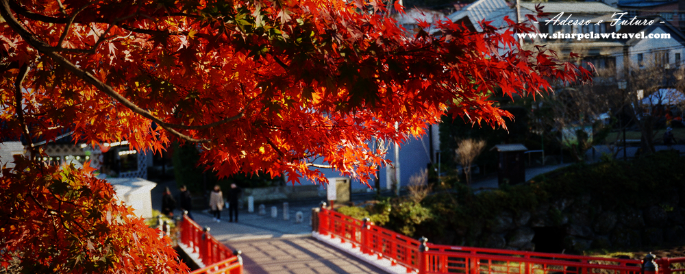 日本東京自由行。2018最新連載