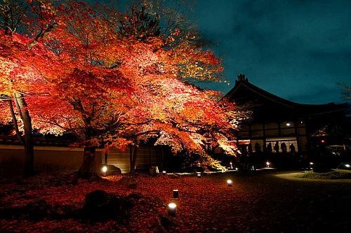 時間 高台 寺 高台寺(こうだいじ)の見どころと行き方|京都のお寺 |