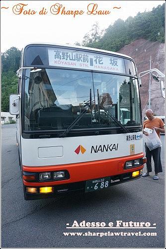 DSC04694_副本